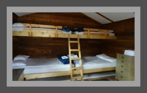 "Cabins am ""Coal Mine Campground"" (Yukon Territory, Kanada)"