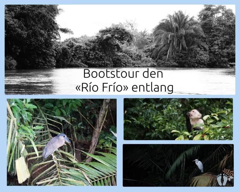 Costa Rica: Tag 06 und 07: Vulkan Arenal und Bootstour den Río Frío entlang 5