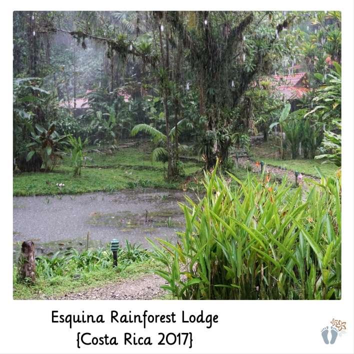 in der «Esquina Rainforest Lodge» {Costa Rica 2017}