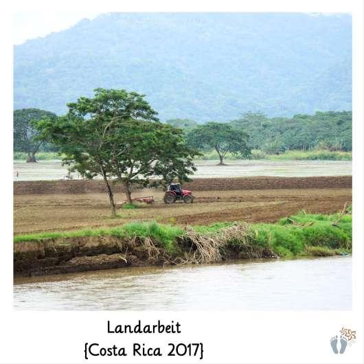 bei der Landarbeit {Costa Rica 2017}