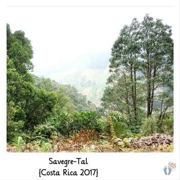 Wanderung im «Savegre-Tal» {Costa Rica 2017}