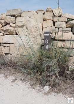 «Tas-Silġ»-Wanderung {Reisetagebuch Malta: Tag 03}