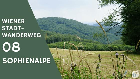 Wiener Stadtwanderweg 08 «Sophienalpe» {Streifzug}