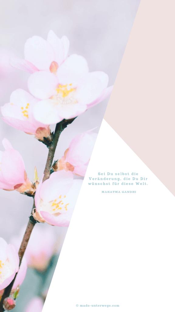 Wallpaper für Smartphone_inkl. Spruch von Mahatma Gandhi_750 x 1334 px