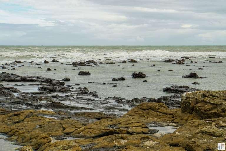 bei der «Curio Bay» {Reisetagebuch «Roadtrip durch Neuseeland mit dem Bus»: «Catlins Coast»}
