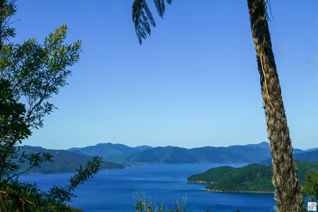 «Marlborough Sounds» {Reisetagebuch «Roadtrip durch Neuseeland mit dem Bus»}