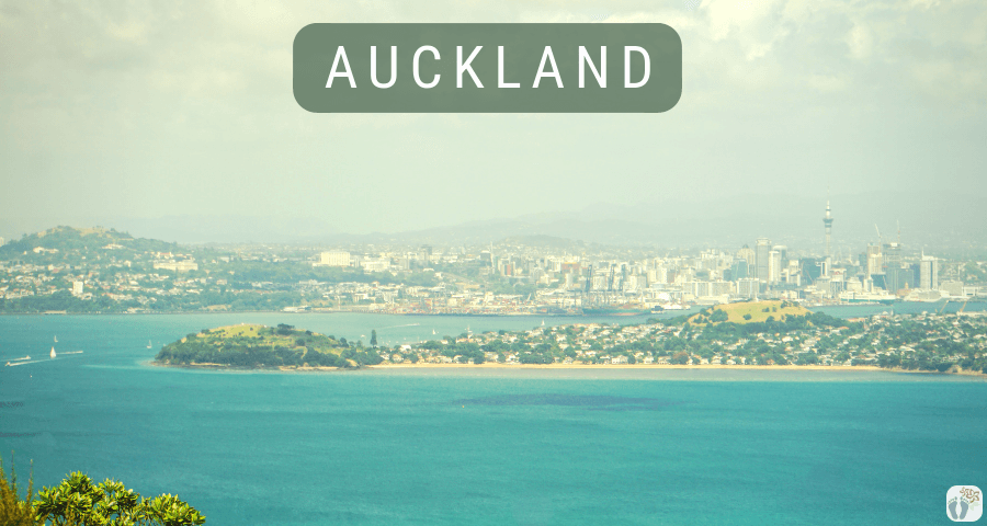 Blick auf Auckland von Rangitoto Island {Reisetagebuch «Roadtrip durch Neuseeland mit dem Bus»}