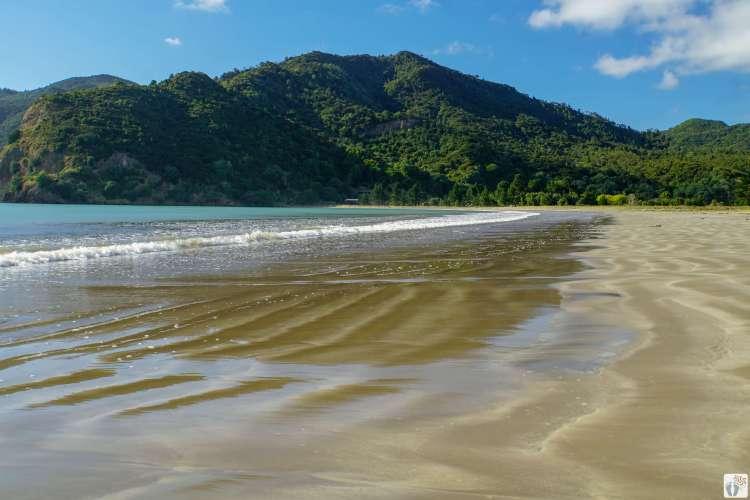 Kennedy Bay {Reisetagebuch «Roadtrip durch Neuseeland mit dem Bus»: Northern Coromandel}
