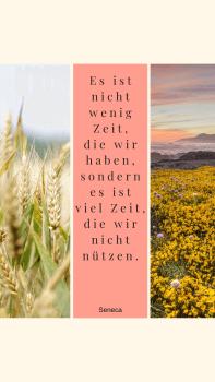 "Wallpaper für Smartphone_inkl. Zitat von Lucius Annaeus Seneca ""Zeit""_Seneca_750 x 1334 px"