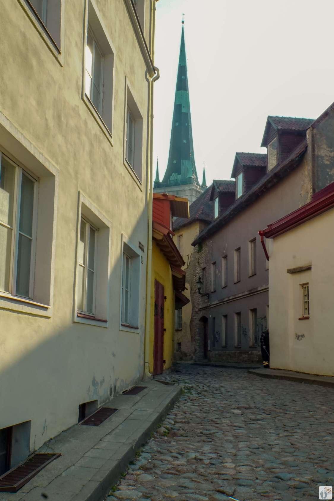 Blick auf die Olaikirche-Oleviste kirik_Tallinn - Estland