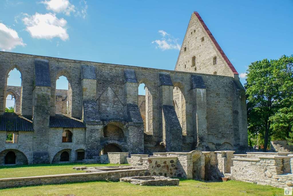 Ruinen St.-Brigitten-Kloster - Pirita klooster_Tallinn - Estland