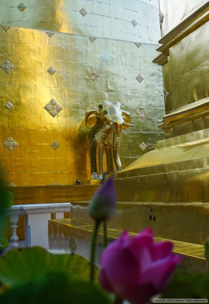 Wat Phra Singh in Chiang Mai (Reisetagebuch «Thailand als Alleinreisende ohne Roller entdecken»)