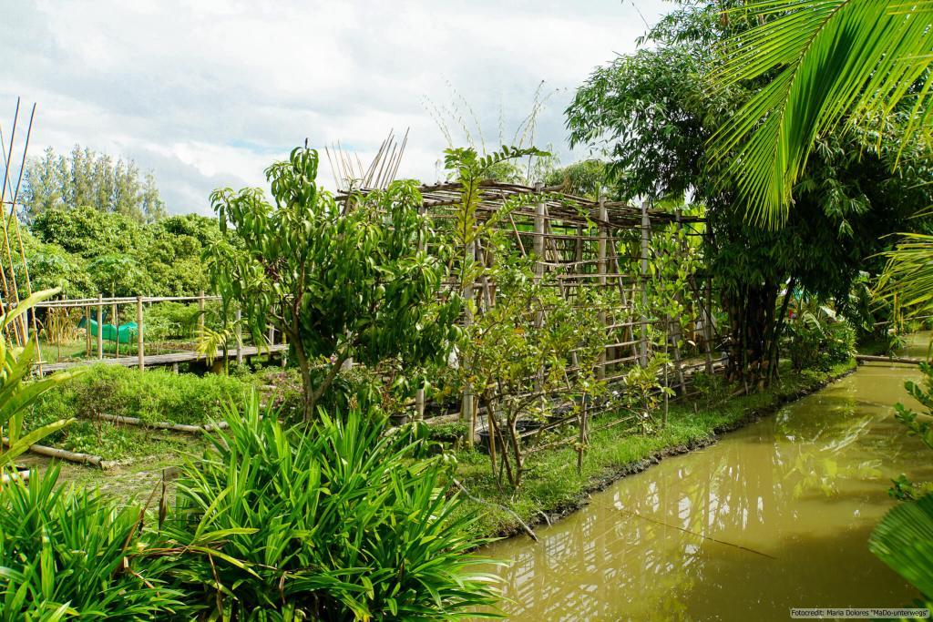 Zabb-E-Lee Thai Cooking School: Biofarm bei Chiang Mai (Reisetagebuch «Thailand als Alleinreisende ohne Roller entdecken»)
