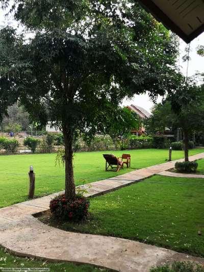 The Nest House in Pai - Blick in den Garten (Reisetagebuch «Thailand als Alleinreisende ohne Roller entdecken»)