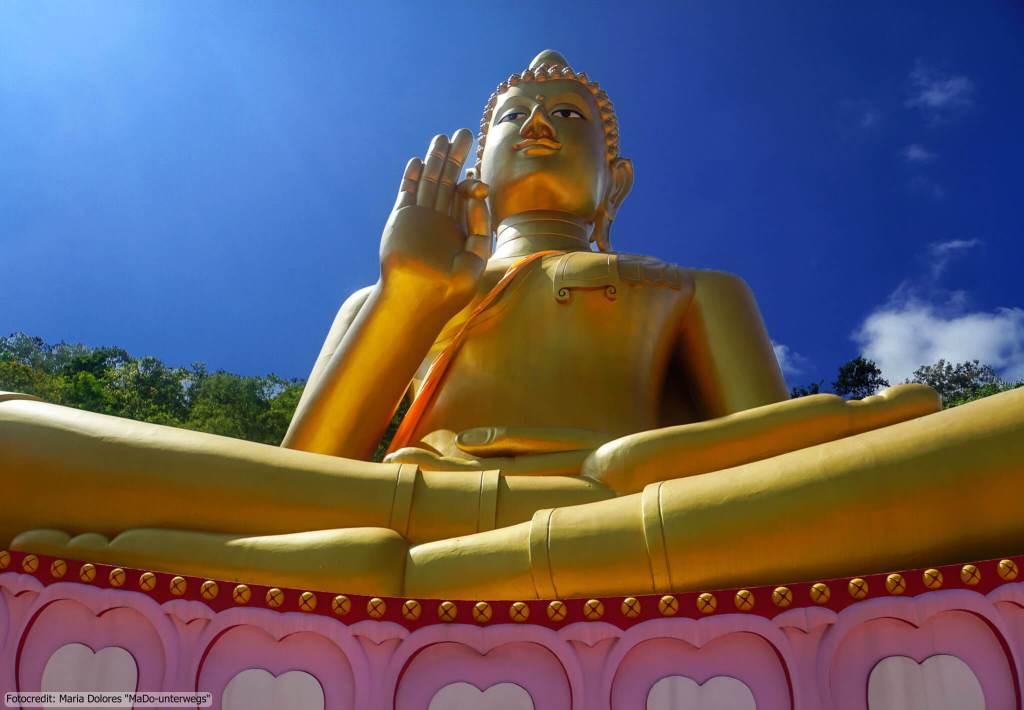 Wat Khao Rang in Phuket Town - goldener sitzender Buddha (Reisetagebuch «Thailand als Alleinreisende ohne Roller entdecken»)