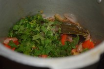 With coriander and mint leaves