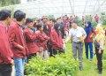 Mahasiswa Pertanian UISU (Medan Bisnis Daily)