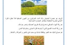 Photo of وصف الريف