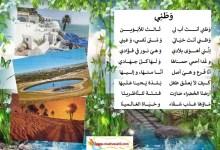Photo of محفوظات وطني ، حب الوطن