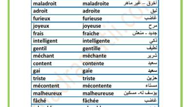 Photo of Tableau des adjectifs masculin/féminin + traduction en arabe