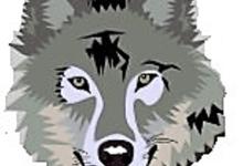 Photo of قناع – ذئب masque – loup