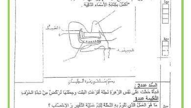 Photo of تقييم الثلاثي الثالث في مادة الايقاظ العلمي السنة السادسة