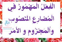 Photo of الفعل المهموز في المضارع المنصوب و المجزوم و الأمر – معلقات السنة 5