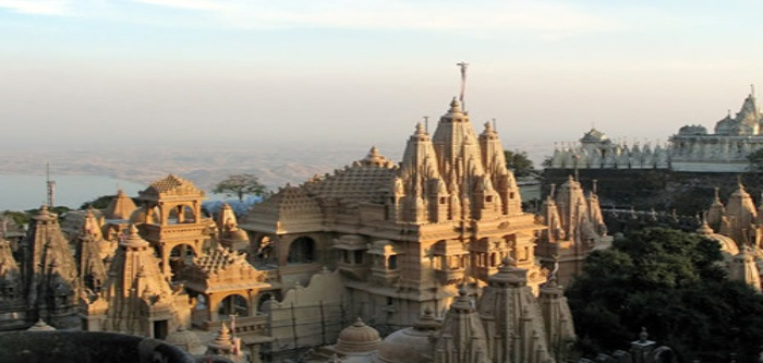 Gujarat Cultural blend with Wildlife Tour Packages(8N/9D)