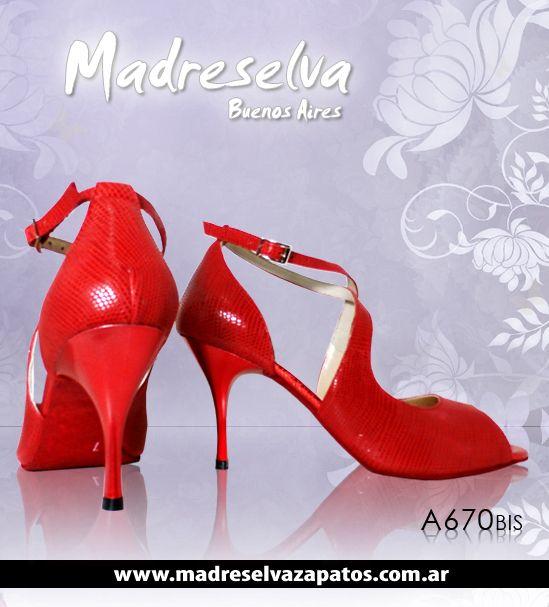Zapatos de Tango A670bis
