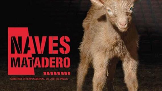Las Naves 10, 11 y 12 estrenan programación y nombre: Naves Matadero. Centro Internacional de Artes Vivas