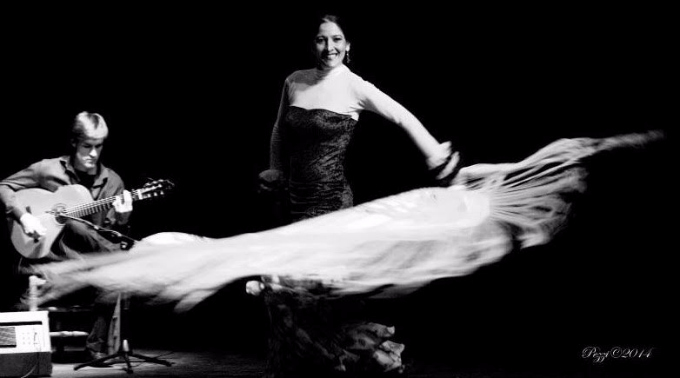cante-flamenco-madrid-espectaculo