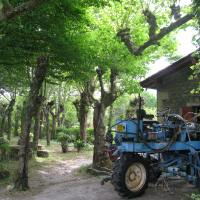 Day 5 – Daney tractor