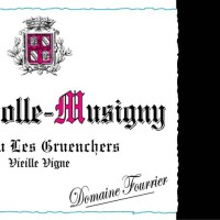 FOURRIER-Chambolle-Gruenchers-2005