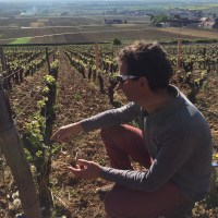 Laurent-Lignier-in-Chaffot-vineyard