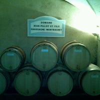 the Pillot cellars