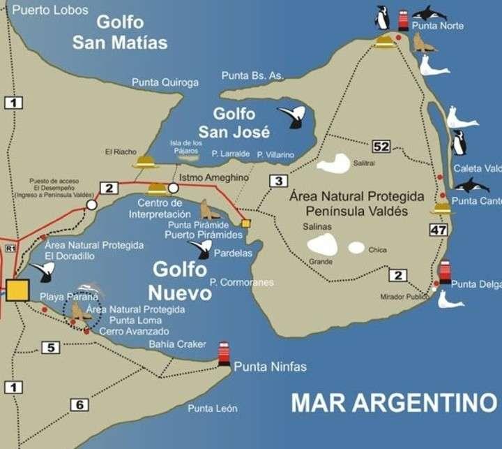Mapa Fauna Puerto Madryn, Chubut