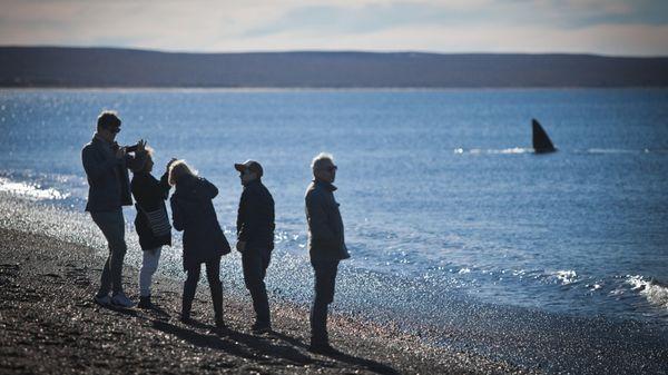 Puerto Madryn, Balnearios