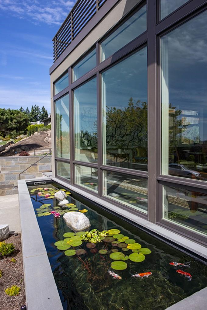 Baylis Architects Koi Pond