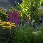 Bethany Rydmark :: Landscapes