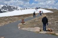 Along the Trail Ridge Road (5)