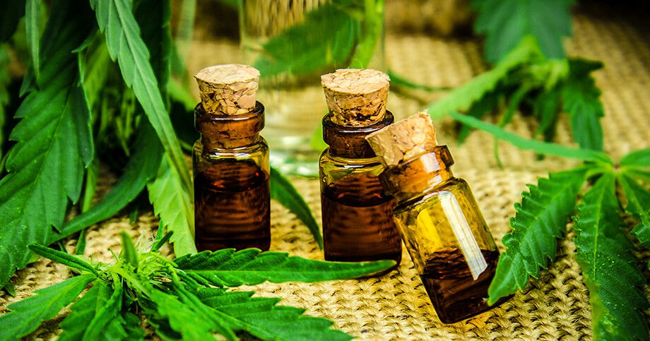 How To Start Marketing Your CBD Startup