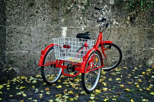 tricycle pre-ride checklist