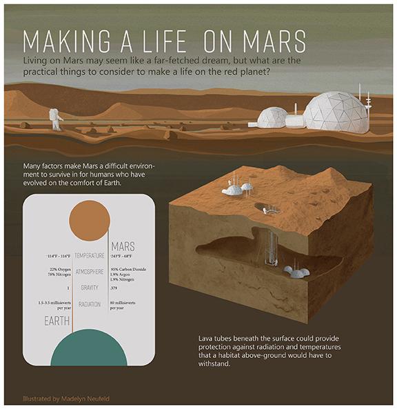 design science illustration madelyn neufeld