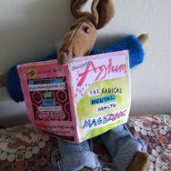 mouse reading asylum zine