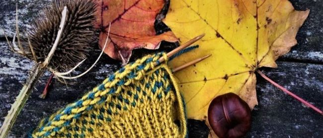 picture of knitting and leaves
