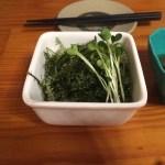 ミネラルたっぷり、沖縄の名物料理。海ぶどう。別名、グリーンキャビア。