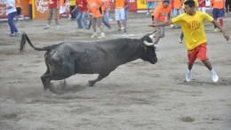 corridas de toros zapote 2016