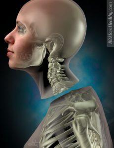 sergio canavero transplante de cabeza