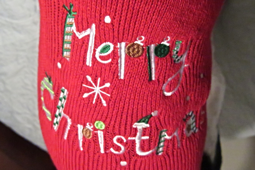 Pixie Christmas Attire 2