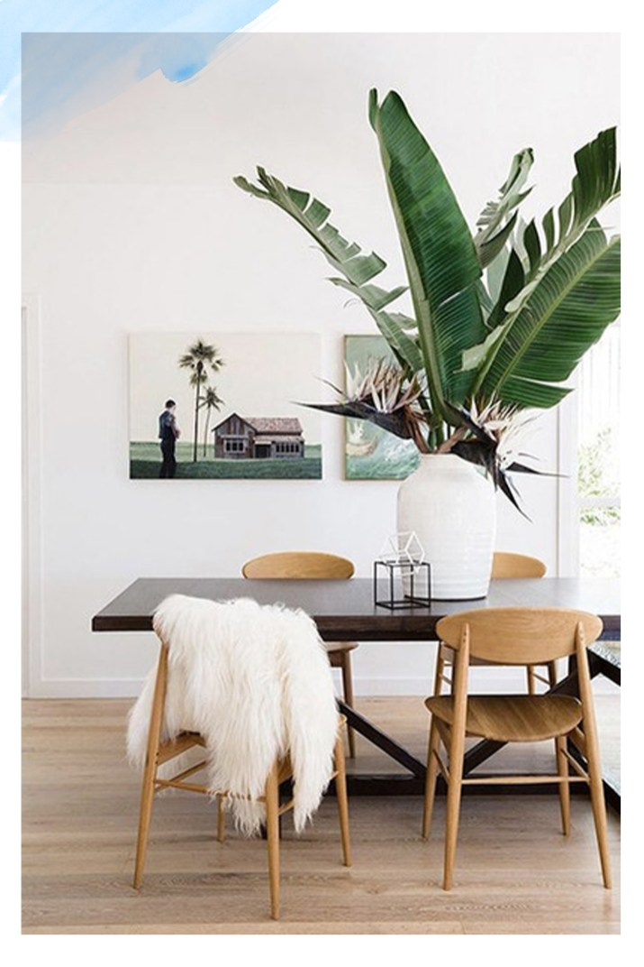 Oversized Plant Home Decor 2